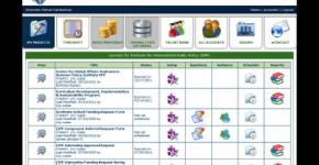 Online Survey System
